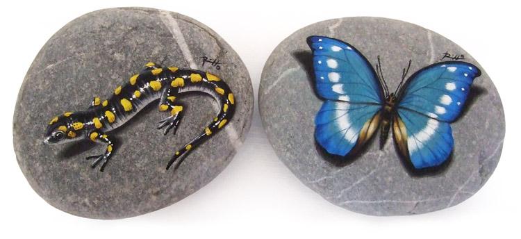Sassi dipinti - salamandra e farfalla