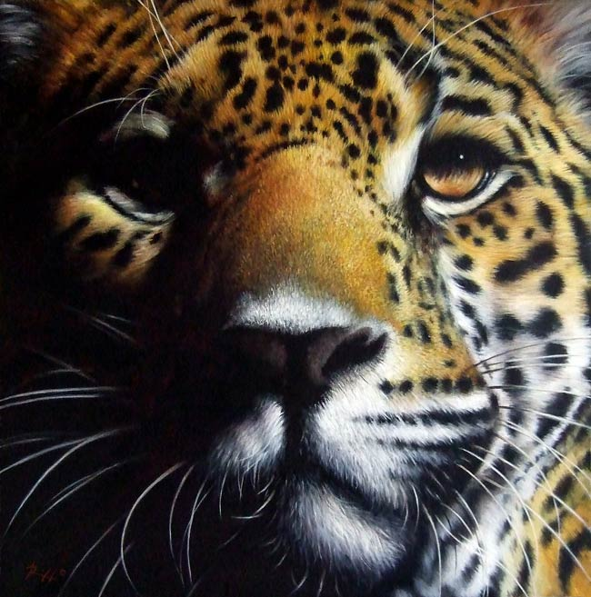 Wildlife art by Roberto Rizzo