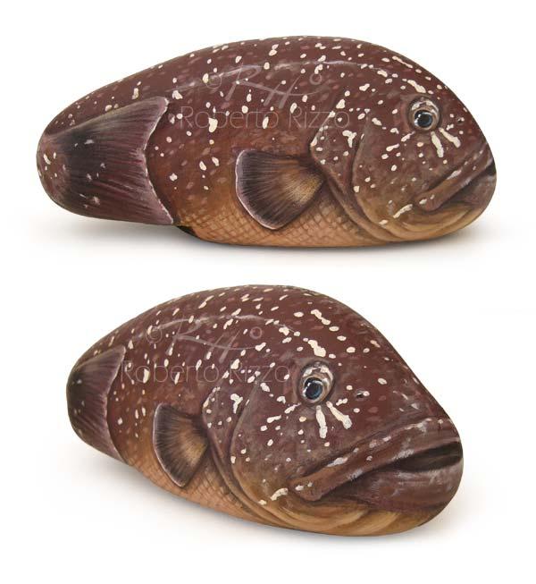 Sassi dipinti con pesci - cernia