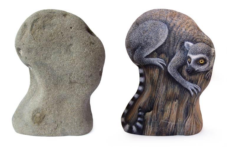Sassi dipinti - lemure catta