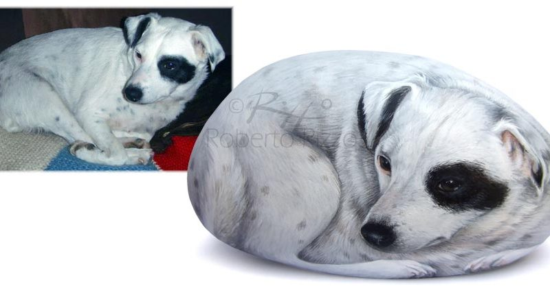 Sassi Dipinti - Ritratti Di Animali Su Pietra