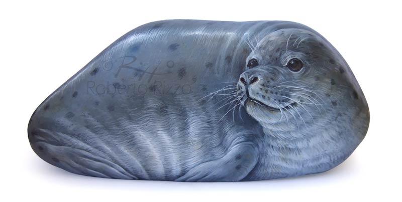 Dipingere su pietra - foca