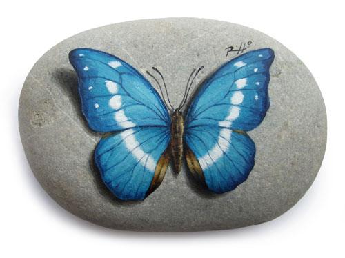 sassi dipinti farfalle