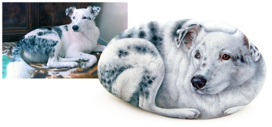 Ritratti di cani sui sassi