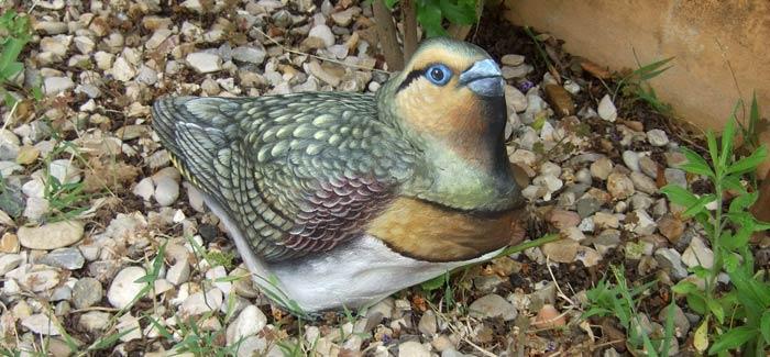 Uccelli dipinti su pietra