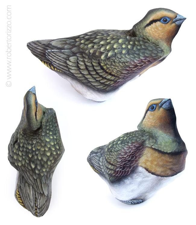 Uccelli dipinti sui sassi