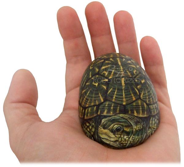 Tartarughe dipinte su pietra l 39 arte di roberto rizzo for Sassi per tartarughe