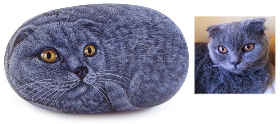 Gatti su pietra
