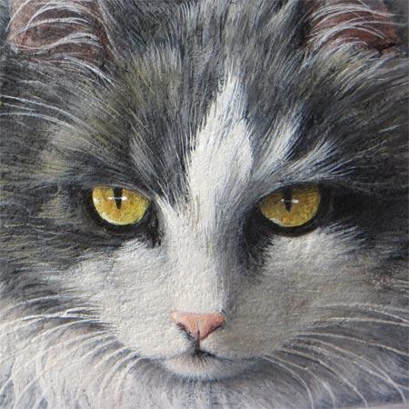 Sassi dipinti gatti | Ritratti di gatti su pietra