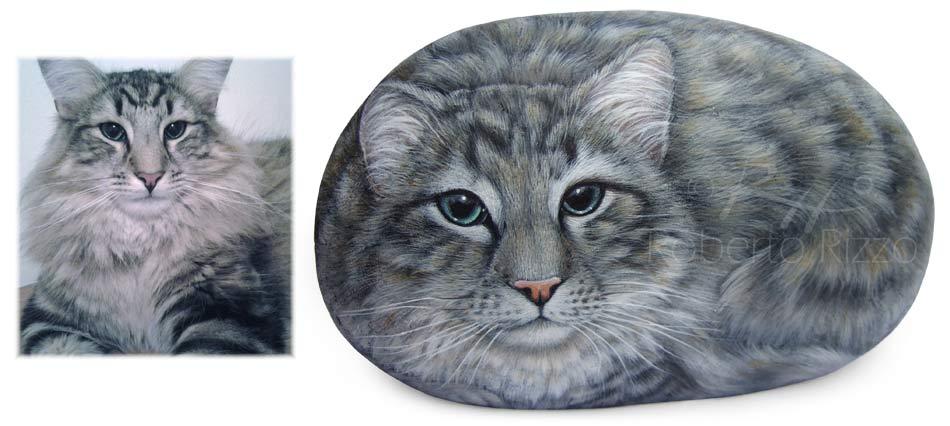 Ritratti di gatti - Mio