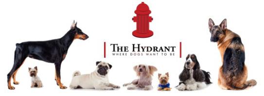 the-hidrant