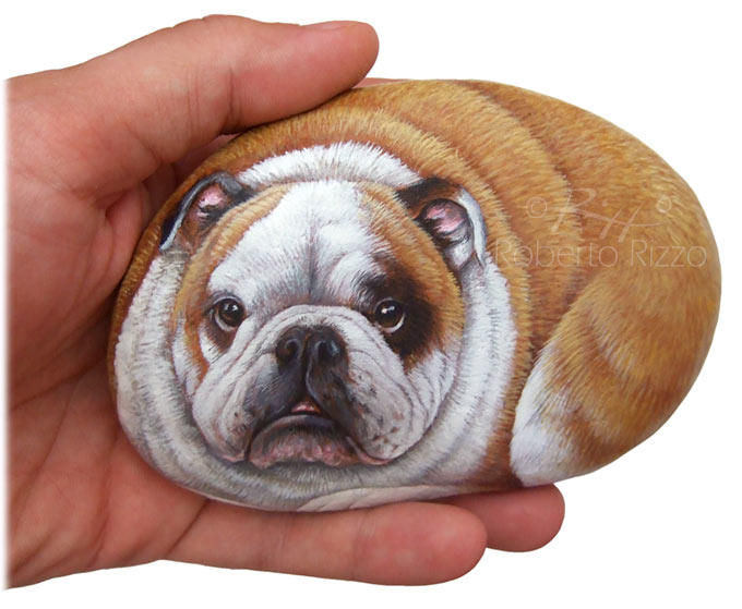 Pittura su pietra - bulldog