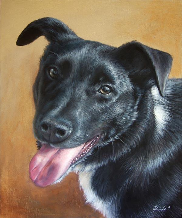 Ritratti di cani su tela - Milo