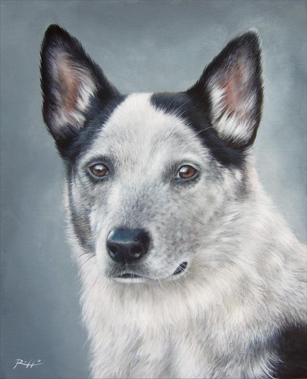 Cani dipinti su commissione | Ritratto di Dime