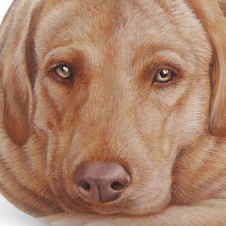 Pietre dipinte personalizzate - Ritratti di cani