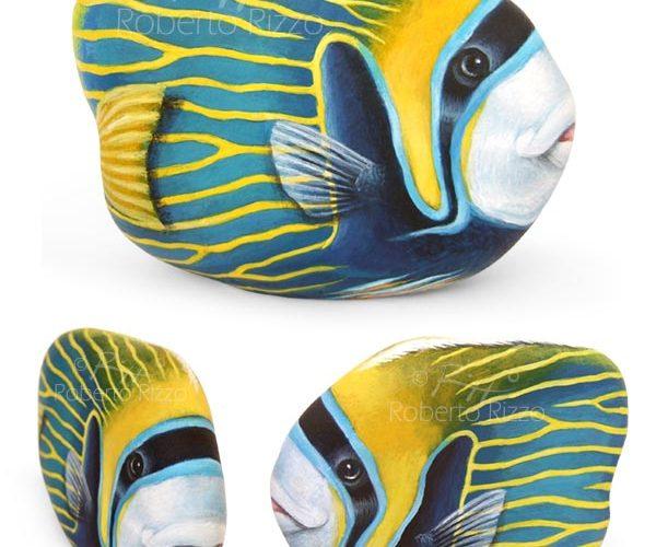 Pesce Angelo Imperatore- Acrilico Su Pietra - Cm. 10