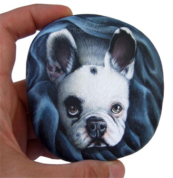 Ritratti di cani sui sassi - ritratto di Rocky