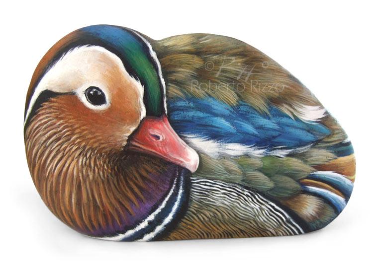 Sassi dipinti con uccelli l 39 arte di roberto rizzo for Sassi per tartarughe