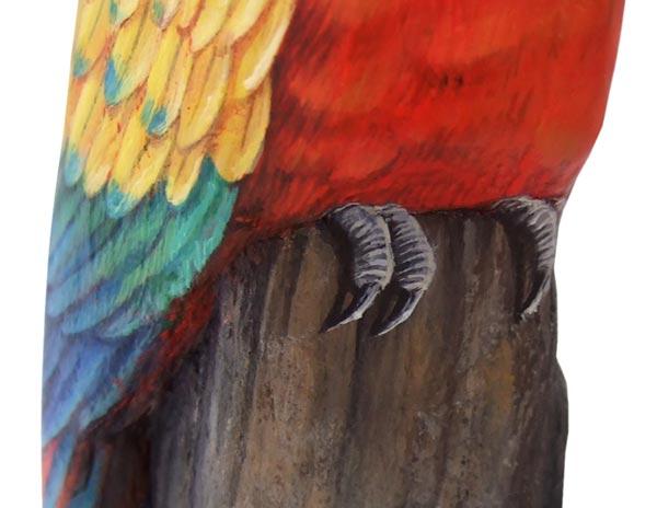 Sassi dipinti pappagallo - ara macao (dettaglio)
