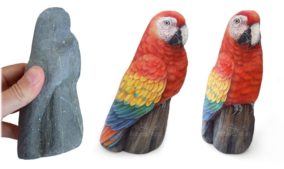 Sassi dipinti pappagallo - ara macao