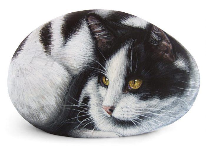 Gatto Bianco E Nero Dipinto