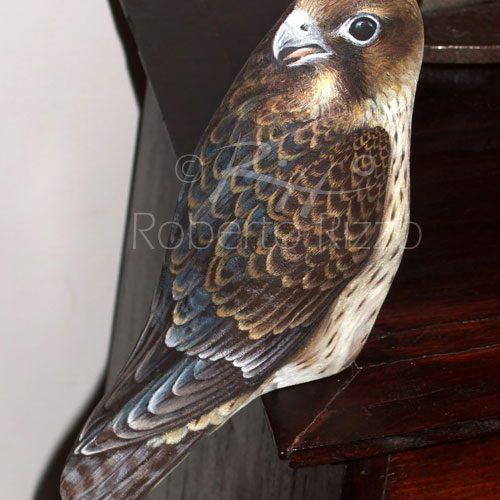 Falco Pellgrino - Acrilico Su Pietra - Cm. 22