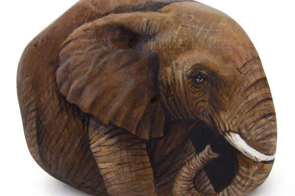Sassi Dipinti - Elefante Africano