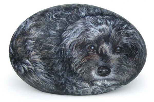 Ritratti Di Animali Dipinti Su Pietra