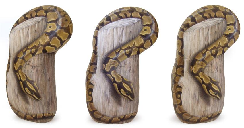 Sassi dipinti serpenti