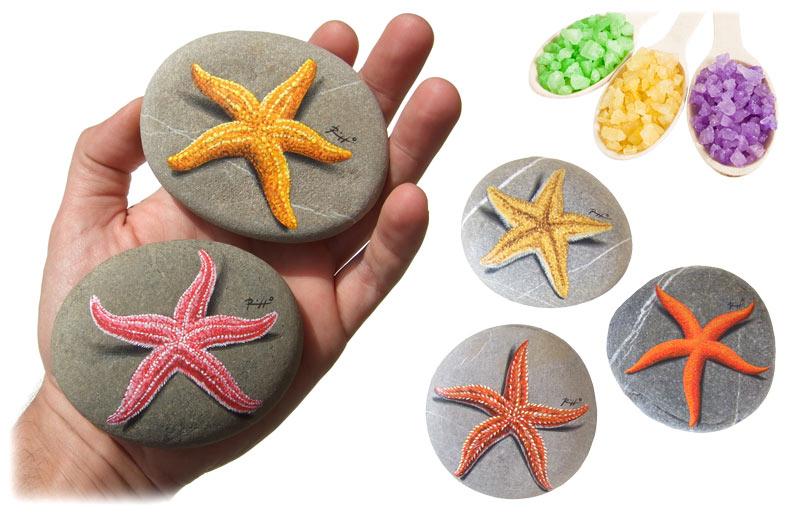 Sassi dipinti stelle marine