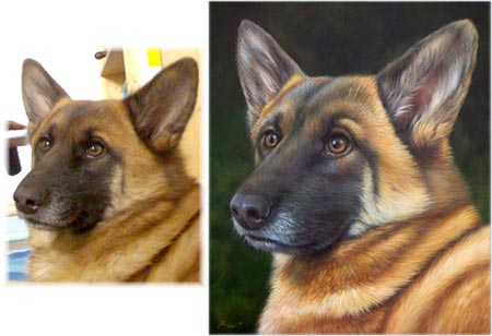 Ritratti Di Animali Su Commissione Quadri E Sassi Dipinti