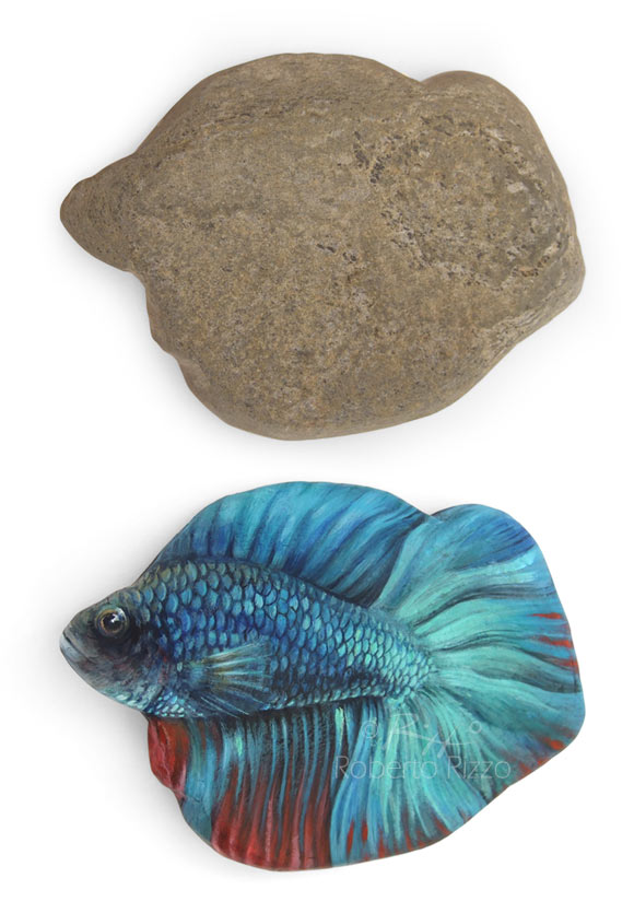 Pesce combattente dipinto su pietra