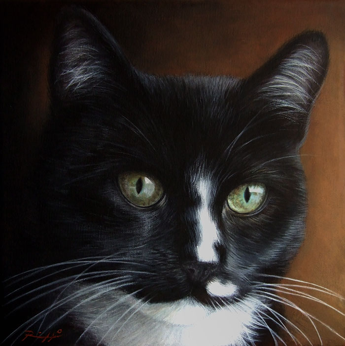 Ritratto di gatto bianco e nero