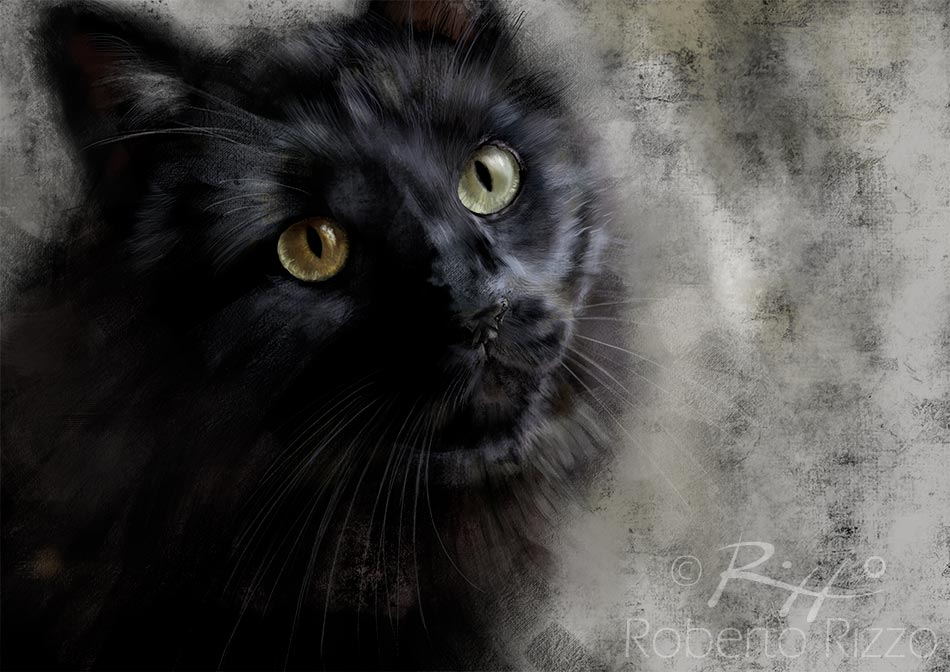 Black Cat - Digitale - cm. 40 x 30