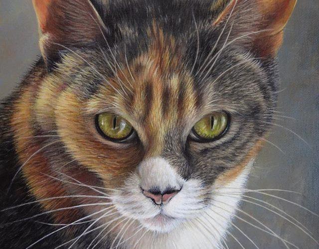 Gatto Dipinto Su Tela
