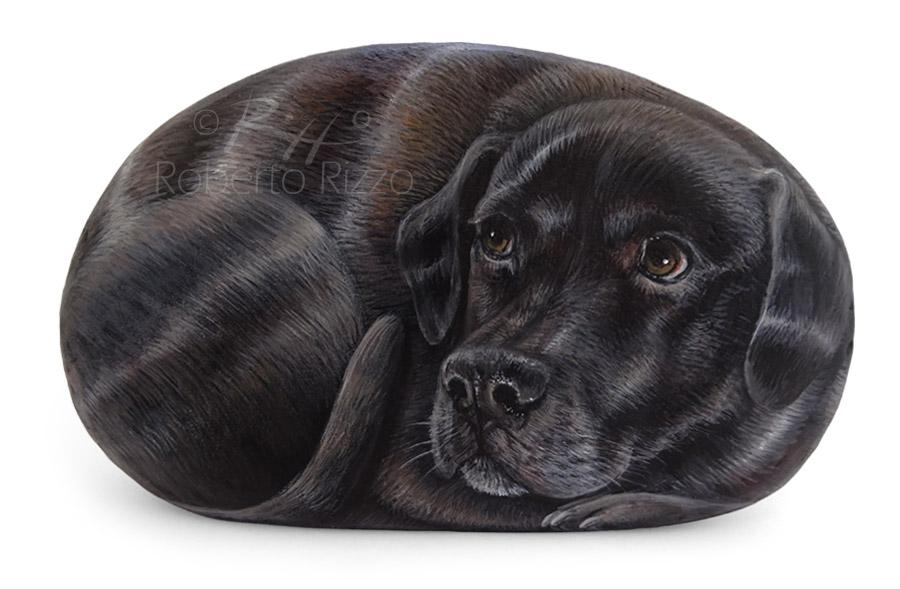 Cane dipinto su sasso