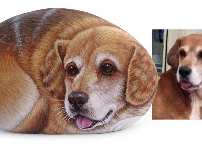 Beagle Ritratto Su Sasso
